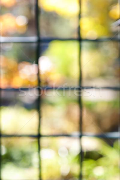 Kert kilátás ablakkeret absztrakt elmosódott bokeh Stock fotó © elenaphoto