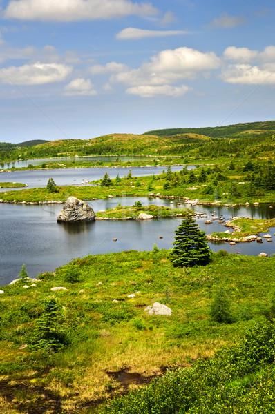 美しい 湖 海岸 ニューファンドランド島 風光明媚な ストックフォト © elenaphoto