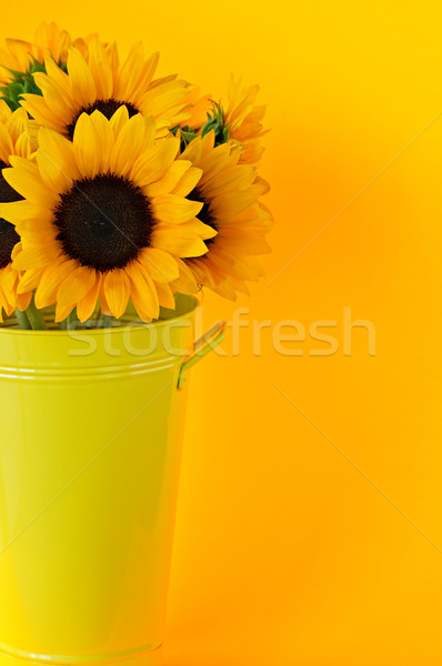 Photo stock: Tournesols · vase · bouquet · jaune · métal · fleurs