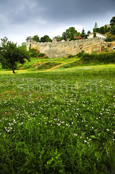 Forteresse Belgrade domaine fleurs sauvages vert Voyage Photo stock © elenaphoto