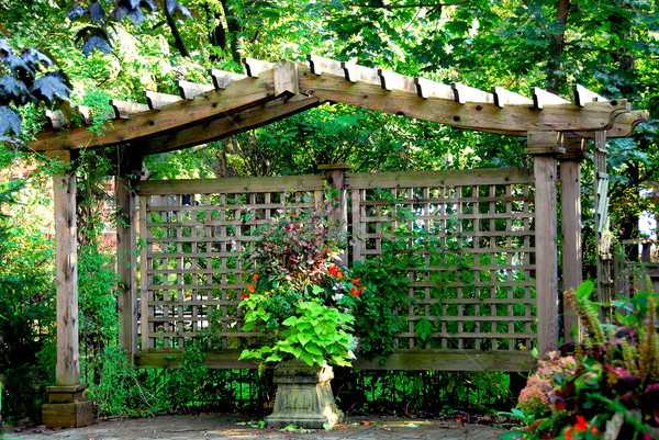 Japonais jardin luxuriante bois porte structure Photo stock © elenaphoto
