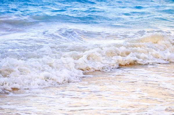 Waves breaking on tropical shore Stock photo © elenaphoto