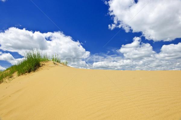 Stock photo: Desert landscape in Manitoba, Canada