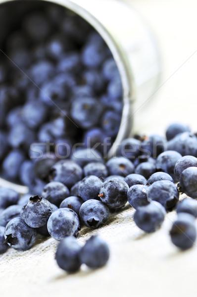 Blueberries Stock photo © elenaphoto