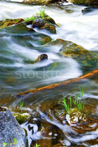 River through woods Stock photo © elenaphoto