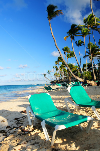 Sandy beach of tropical resort Stock photo © elenaphoto