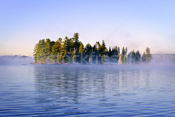 Island in lake with morning fog Stock photo © elenaphoto