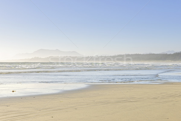 Sahil okyanus Vancouver ada Kanada long beach Stok fotoğraf © elenaphoto
