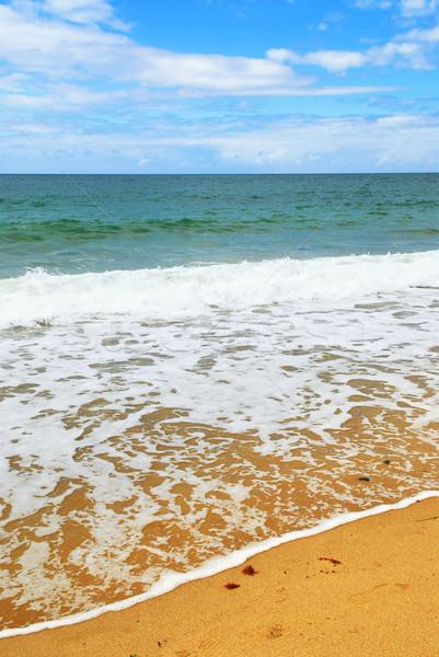 Ocean wave Stock photo © elenaphoto