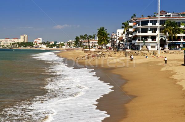 Pacific coast of Mexico Stock photo © elenaphoto