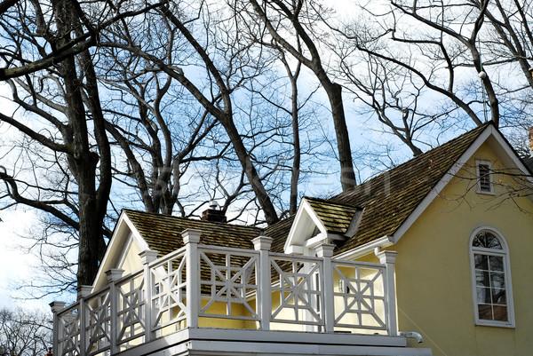 House home balcony Stock photo © elenaphoto