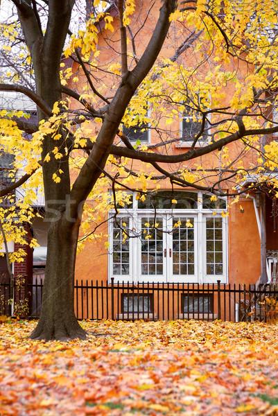 House autumn Stock photo © elenaphoto