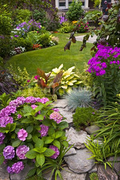 Foto d'archivio: Giardino · fiori · lussureggiante · aiuola · colorato · impianti
