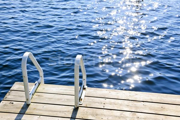 Dokk nyár tó pezsgő víz létra Stock fotó © elenaphoto