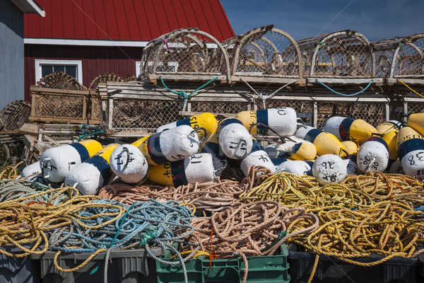 Homár kötél észak Prince Edward-sziget Kanada fa Stock fotó © elenaphoto