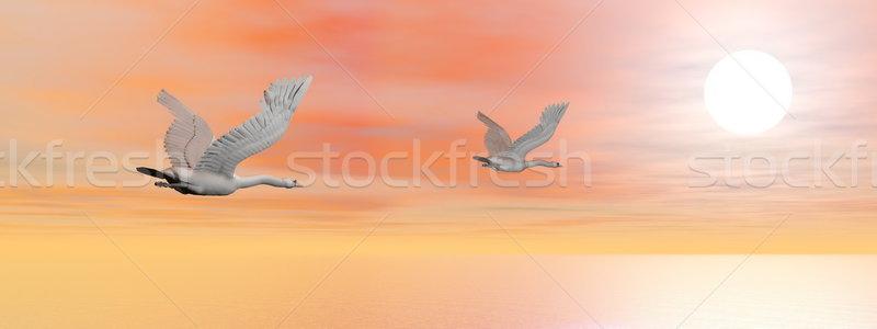 Vándorlás 3d render kettő gyönyörű repülés óceán Stock fotó © Elenarts