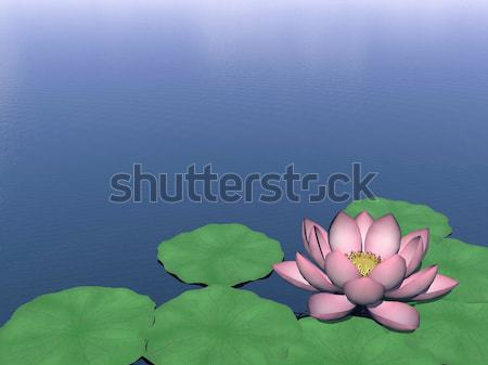 Lotus flower and leaves on water - 3D render Stock photo © Elenarts