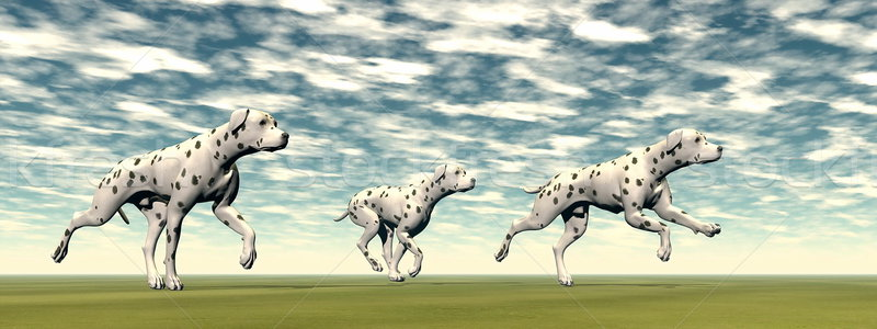 Dalmatian dogs running - 3D render Stock photo © Elenarts