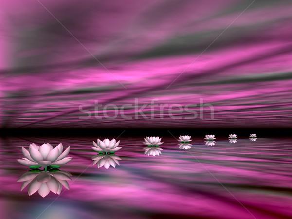 Foto stock: água · lírios · passos · sol · 3d · render · belo