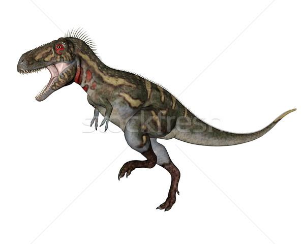 Nanotyrannus dinosaur walking - 3D render Stock photo © Elenarts