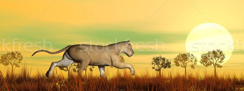 Fut szavanna 3d render fű természet ló Stock fotó © Elenarts