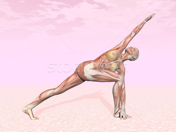 Revolved side angle yoga pose for woman Stock photo © Elenarts