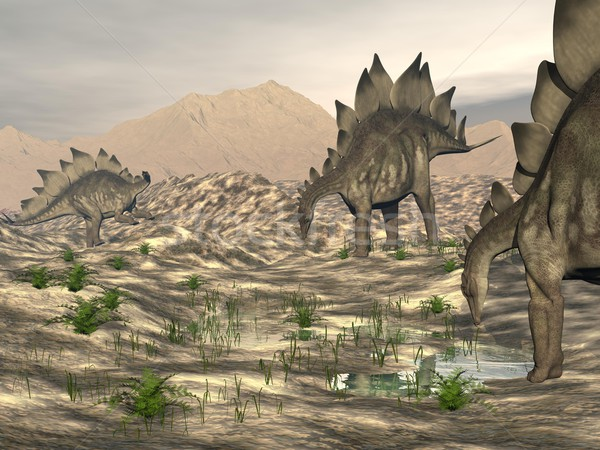 Stegosaurus near water - 3D render Stock photo © Elenarts