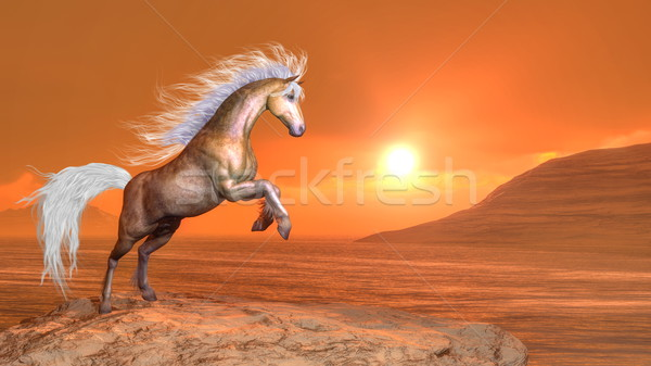 Horse rearing by sunset - 3D render Stock photo © Elenarts