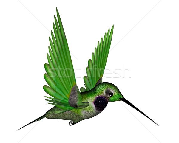 Fekete kolibri 3d render repülés izolált fehér Stock fotó © Elenarts