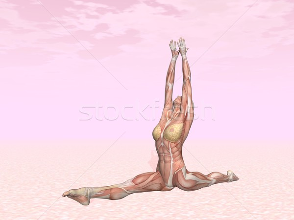 Singe pose de yoga femme muscle visible rose Photo stock © Elenarts