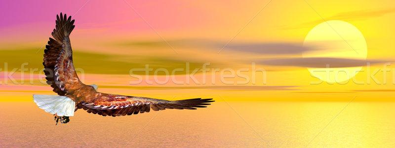 Stockfoto: Adelaar · vliegen · 3d · render · oceaan · zonsondergang · hemel