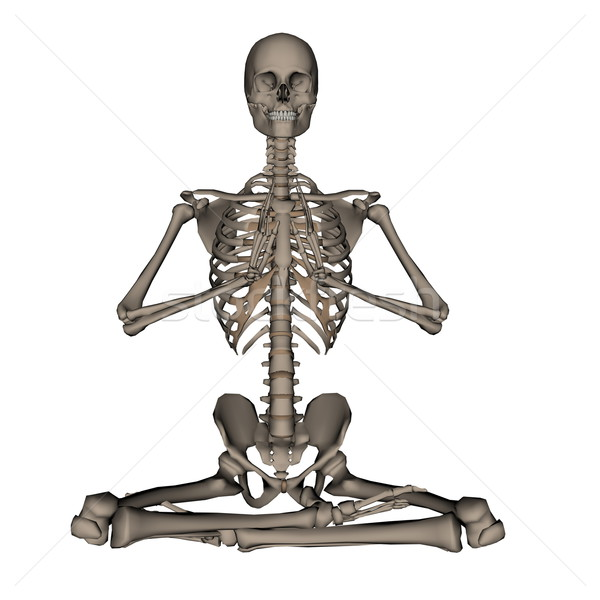 Human skeleton meditation- 3D render Stock photo © Elenarts