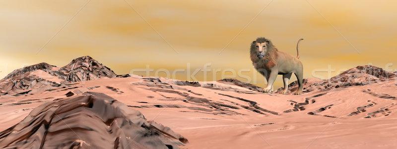 León desierto 3d pie solo puesta de sol Foto stock © Elenarts