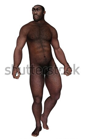 Male homo erectus looking aside - 3D render Stock photo © Elenarts