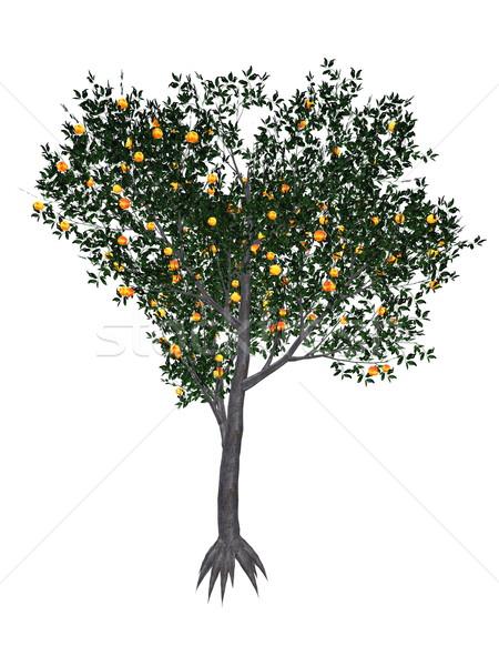 Peach tree - 3D render Stock photo © Elenarts