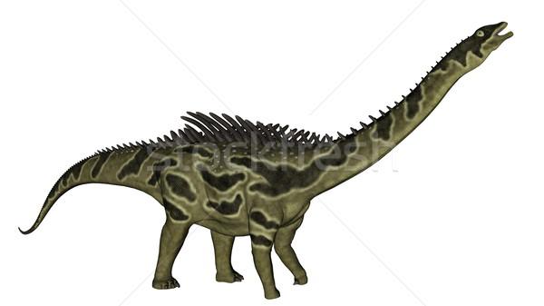 Dinossauro 3d render cabeça para cima isolado branco Foto stock © Elenarts