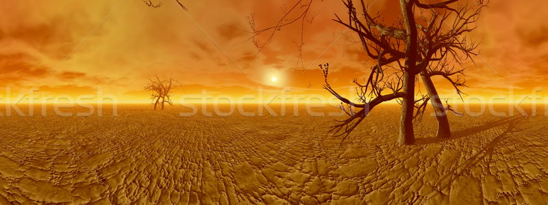 Dryness in desert - 3D render Stock photo © Elenarts