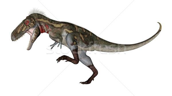 Nanotyrannus dinosaur roaring - 3D render Stock photo © Elenarts