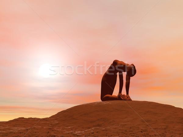 Camello plantean 3d yoga Foto stock © Elenarts