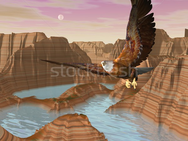 Eagle upon canyons - 3D render Stock photo © Elenarts