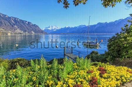 Göl manzara İsviçre beyaz yelkencilik Stok fotoğraf © Elenarts