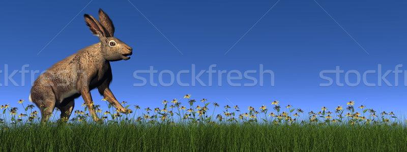 работает заяц 3d визуализации зеленая трава цветы день Сток-фото © Elenarts
