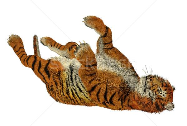 Tiger playing Stock photo © Elenarts