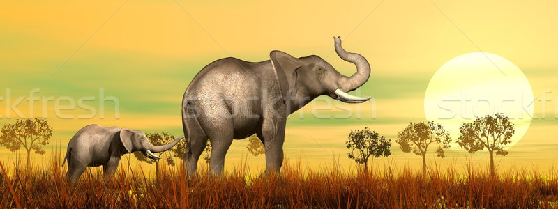 Elefante mamá bebé sabana 3d Foto stock © Elenarts