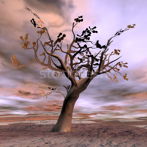 фантазий дерево 3d визуализации красивой осень пустыне Сток-фото © Elenarts