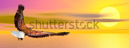 Bald eagle flying - 3D render Stock photo © Elenarts