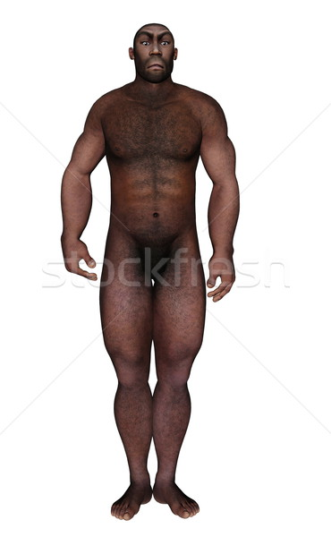 Male homo erectus standing - 3D render Stock photo © Elenarts