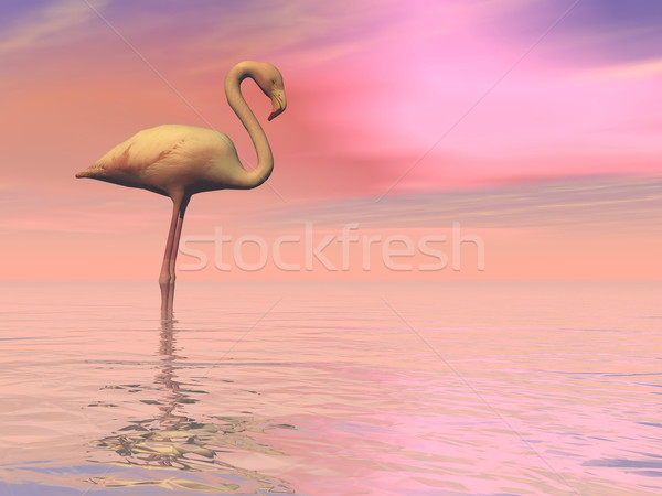 Peaceful falmingo- 3D render Stock photo © Elenarts