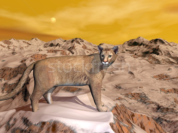 Cougar in the mountain - 3D render Stock photo © Elenarts