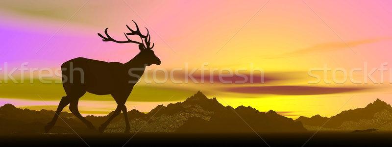 Elk shadow by sunset - 3D render Stock photo © Elenarts